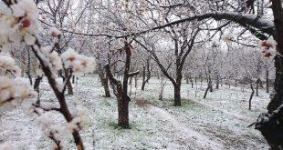 بهار بارانی برفی اخلمد