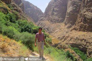 حسین پروازی